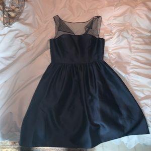 Adrianna Papell Mesh Evening Dress